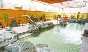 THE SPA 西新井の割引クーポン